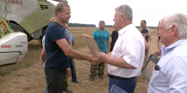 В Каневском районе после жатвы наградили лучших хлеборобов