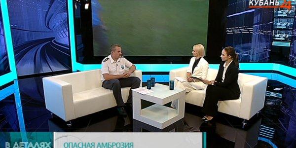 Валерий Немченко: амброзия опасна даже для тех, у кого нет аллергии