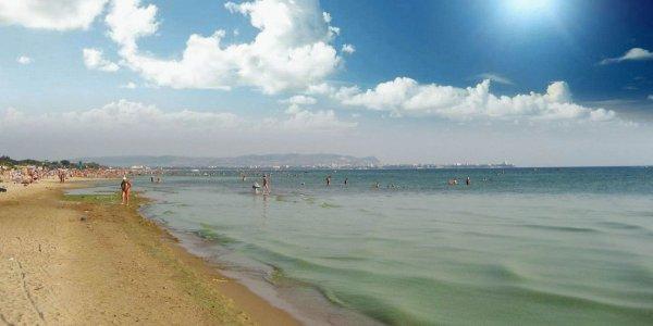 Эксперт: Черное море у берегов Анапы позеленело из-за цветения водорослей