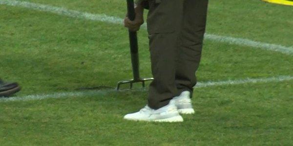 Во время матча «Ахмат» — «Сочи» к воротам выползла змея