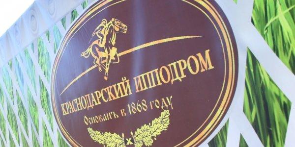 В Краснодаре заработал молодежный конноспортивный клуб на базе ипподрома