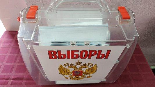 В отдаленных поселках Сочи организовали специальные участки для голосования