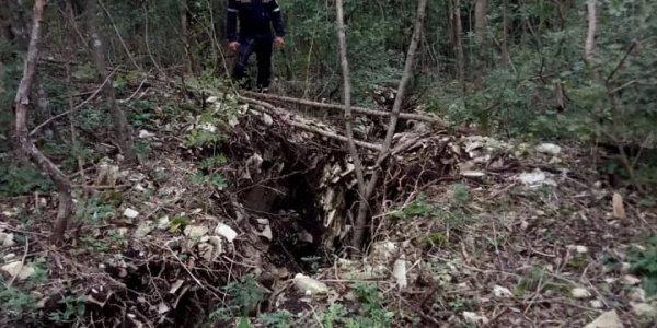 В Новороссийске спасатели огородили опасный провал на Маркотхском хребте