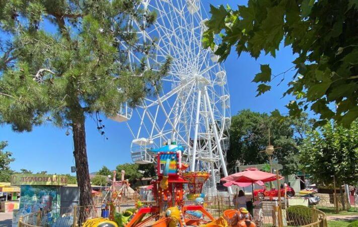 В парке Геленджика объяснили инцидент с недопуском ребенка с синдромом Дауна