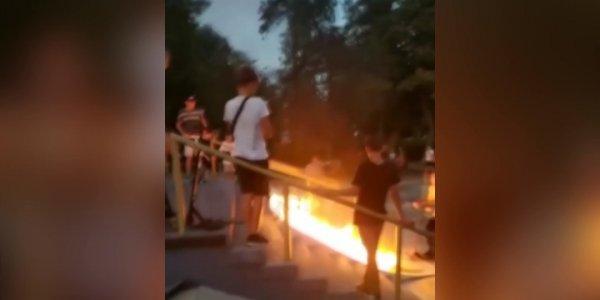 Как блогеры и пользователи соцсетей хайпанули этим летом на Кубани