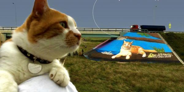 На Крымском мосту появился 10-метровый портрет кота Мостика