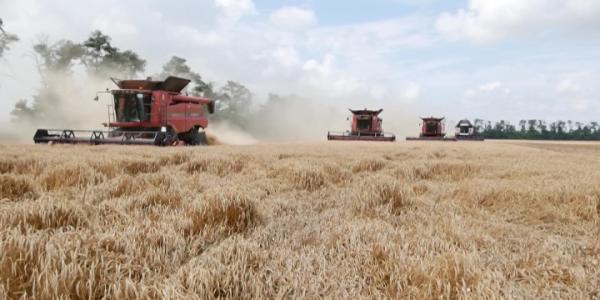 На Кубани обсудили новые возможности агрострахования