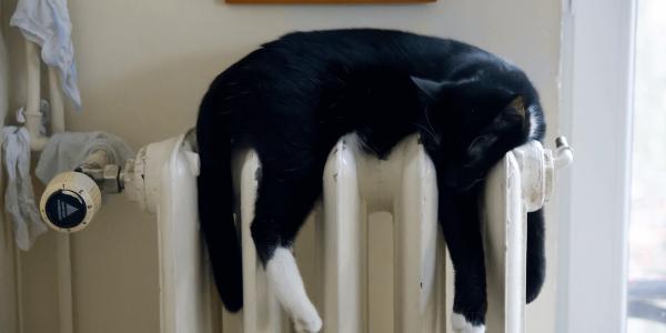 На Кубани включат батареи, когда среднесуточная температура понизится до 8 °С