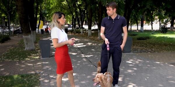 Как бизнес по выгулу собак помог заработать краснодарке в декретном отпуске