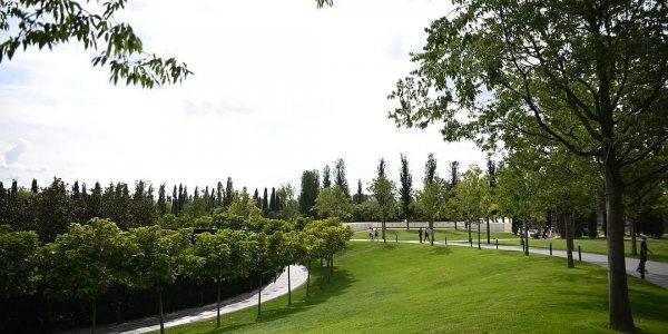Из-за сильного похолодания газоны в парке «Краснодар» перевели на зимний режим
