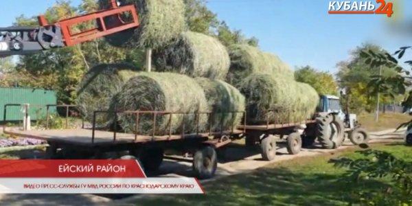 В Ейске задержали мужчину, укравшего сено на 35 тыс. рублей