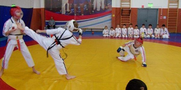 Кубанские каратисты выступят на Кубке Евразии в Ростове-на-Дону
