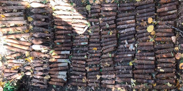 В лесу Крымского района грибник нашел 174 боеприпаса времен войны