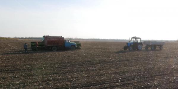 В Кореновском районе под озимую пшеницу отвели более 48 тыс. га